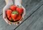 Наибольшим количеством антиоксидантов обладают  фрукты, овощи  красного цвета