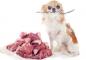 Какой бы вид питания собаки вы ни предпочли, нужно будет придерживаться только его